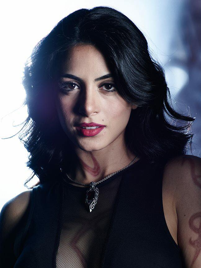 Shadowhunters (14)