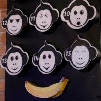 Monkey Mic (5)
